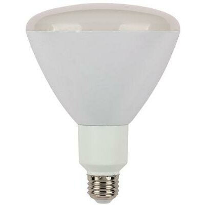 R40 Reflector Dimmable Flood LED Light Bulb Wattage: 12