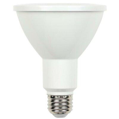 E26/Medium LED Light Bulb