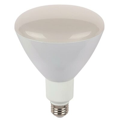 12-Watt (70-Watt) R40 Reflector Dimmable Flood LED Light Bulb
