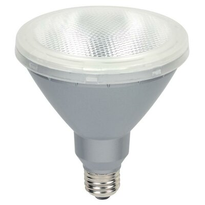 15-Watt (90-Watt) PAR38 Reflector LED Light Bulb (Pack of 2)