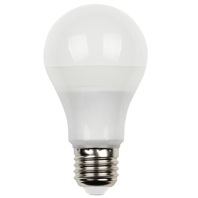 9W Medium Base A19 LED Light Bulb