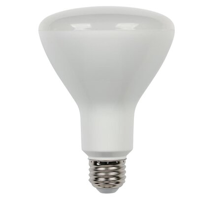 8W Medium Base R30 LED Light Bulb