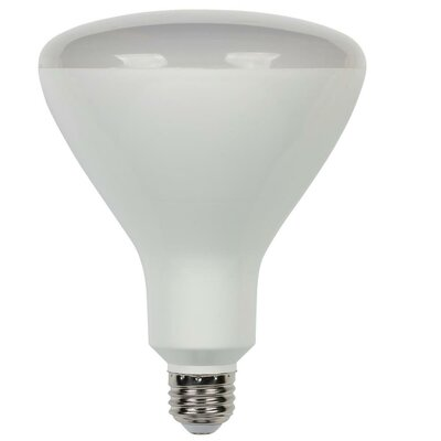 Frosted E26/Medium LED Light Bulb Wattage: 16.5W