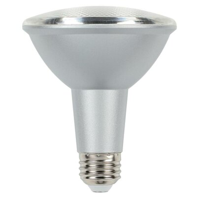 10W Cool Bright Medium Base PAR30 LED Light Bulb