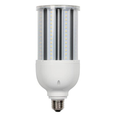 8W Frosted Medium Base T7 LED Light Bulb