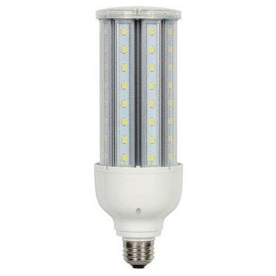 24W Medium Base T23 LED Light Bulb