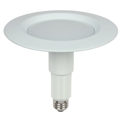 10W E26/Medium LED Light Bulb Bulb Temperature: 3000