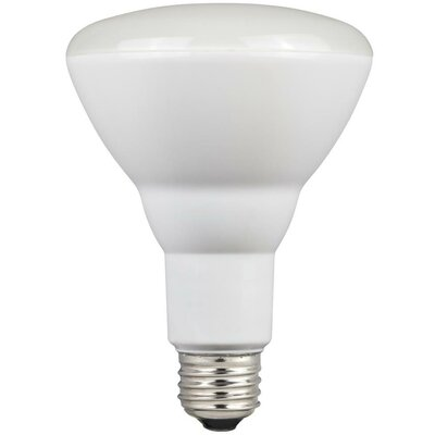 9W E26/Medium LED Light Bulb