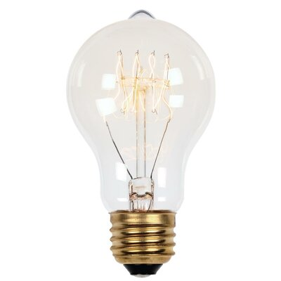 A19 Light Bulb Wattage: 40W