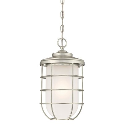 Woolverton 1-Light Outdoor Hanging Lantern