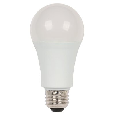 15W E26/Medium (Standard) LED Light Bulb