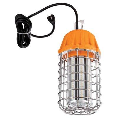 Metal Cage 1-Light LED Foyer/Lantern Pendant