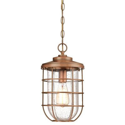 Woolverton Cage 1-Light Outdoor Hanging Lantern