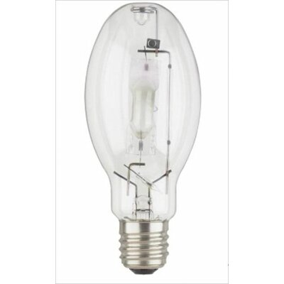 400W Incandescent Light Bulb (Set of 2)