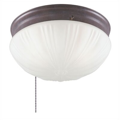 2 Light Ceiling Mount | Wayfair