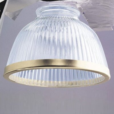 Clear Ribbed Ceiling Fan Shade with Gold Trim (Set of 5)