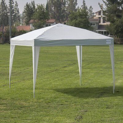 10 Ft. W x 10 Ft. D Canopy 014-HG-16110-WH