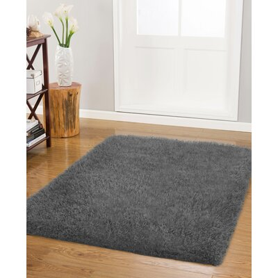 Nasim Charcoal Area Rug Rug Size: Rectangle 26 x 4