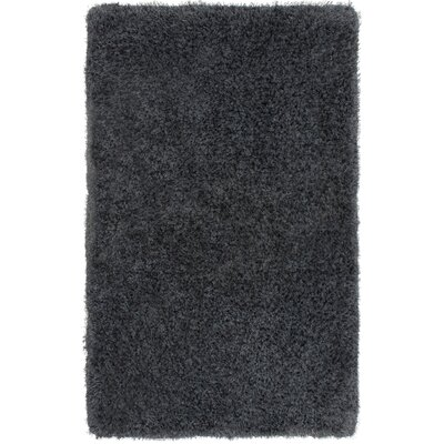 Claudia Charcoal Area Rug Rug Size: 36 x 56
