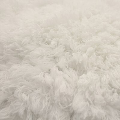 Hexham Plush White Area Rug Rug Size: 23 x 39