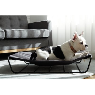 My Territory Dog Hammock Fabric Cover Color: Dark Gray