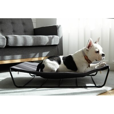 My Territory Dog Hammock Color: Dark Gray