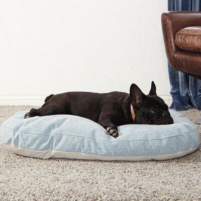 Ordinary Foam Dog Cushion Color: Blue Crush