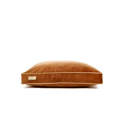 Microsuede Faux Down Cushion Dog Bed Size: Large (26 L x 34 W), Color: Luxe Chocolate Brown/Honey