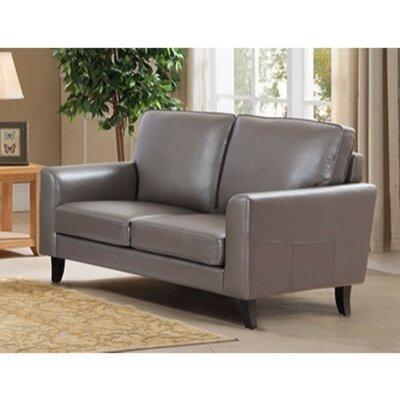 Kinnas Modish Loveseat with Velvety Cushion Upholstery: Gray