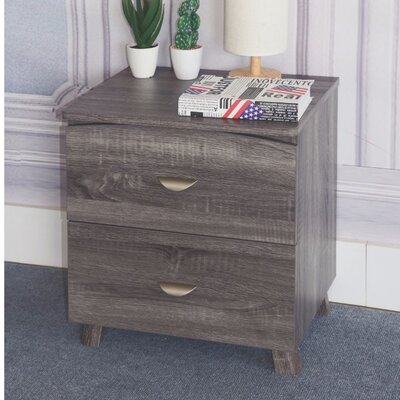 Distefano Spacious 2 Drawer Nightstand Color: Gray