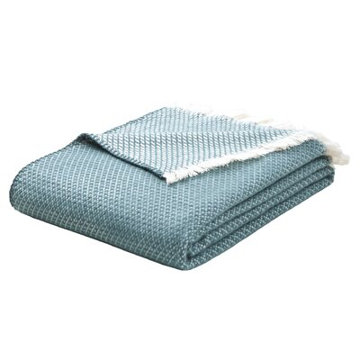 Upper Swainswick Fringe Throw Color: Teal