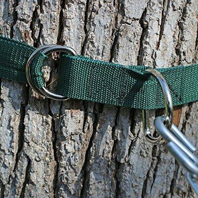 Hammock Tree Strap
