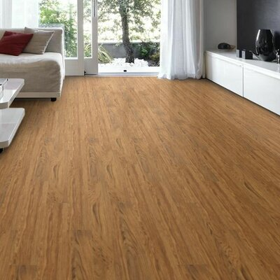 Sinopia 6 x 36 x 4mm Luxury Vinyl Plank in Tuff Shield