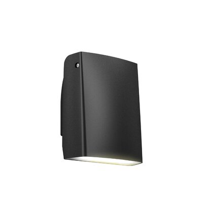 Adjustable 1-Light Wall Pack Finish: Black