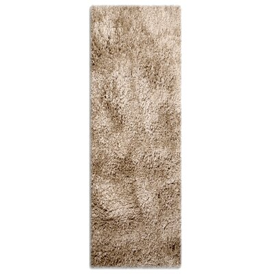 Colorville Brown Area Rug Rug Size: Runner 28 x 73
