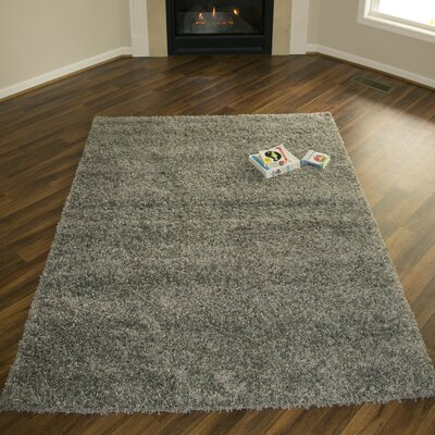 Colorville Dark Gray Area Rug Rug Size: 3'11