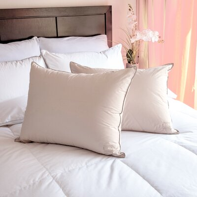 Down Pillow Size: 20 H x 30 W