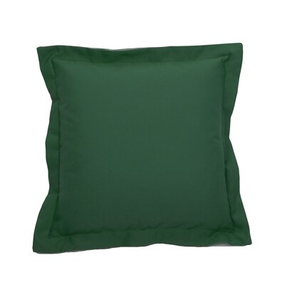 Linen Indoor/Outdoor Throw Pillow (Set of 2) Color: Emerald, Size: 20 x 20