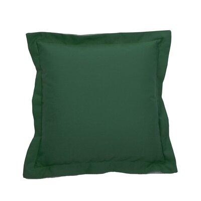 Linen Indoor/Outdoor Throw Pillow (Set of 2) Color: Emerald, Size: 24 x 24