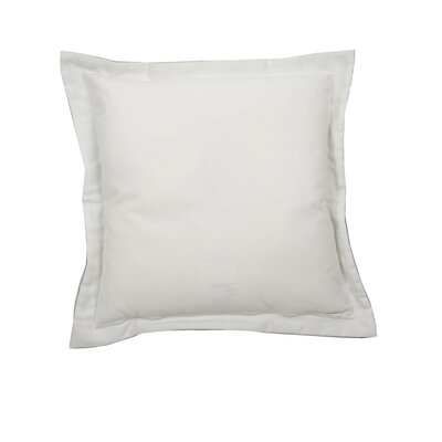Linen Indoor/Outdoor Throw Pillow (Set of 2) Color: Snow, Size: 17 x 17