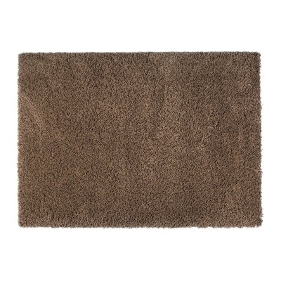 Loft Brown Area Rug Rug Size: 5'3