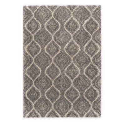 Ocean Gray Area Rug Rug Size: 67 x 96