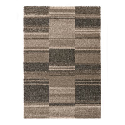 Portland Brown Area Rug Rug Size: 53 x 77