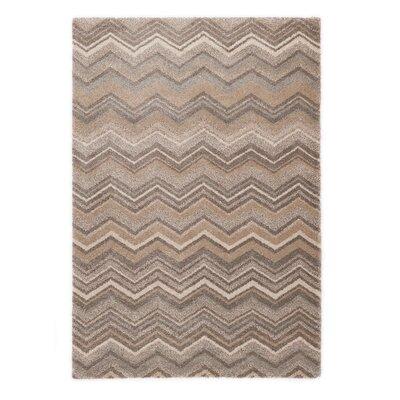 Portland Gray/Beige Area Rug Rug Size: 67 x 96