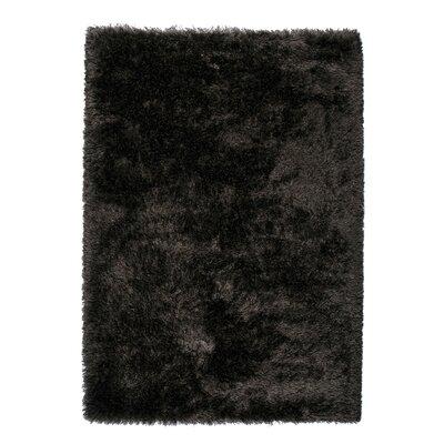 Silk Black Area Rug Rug Size: 53 x 77