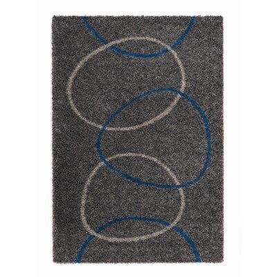 Ocean Gray Area Rug Rug Size: 53 x 77