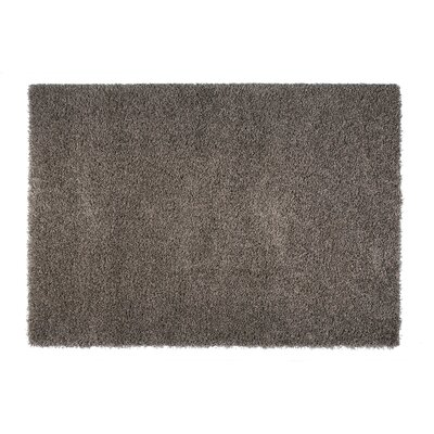 Skyline Gray Area Rug Rug Size: Rectangle 67 x 96