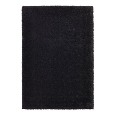 Ocean Black Area Rug Rug Size: 67 x 96