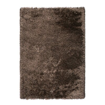 Silk Brown Area Rug Rug Size: 67 x 96