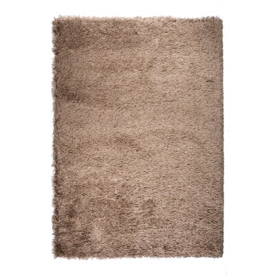 Silk Brown Area Rug Rug Size: 53 x 77